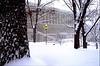 Harrisburg Capitol Grounds During Feb 2010 Snowstorm