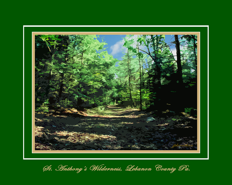 The Old Railroad Bed Trail in St. Anthony's Wilderness