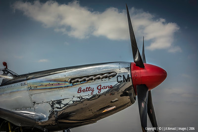 P-51 Painted in Tuscegee Red Tail