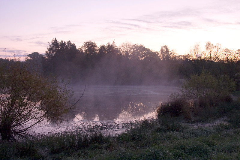 Morning fog on the pond.