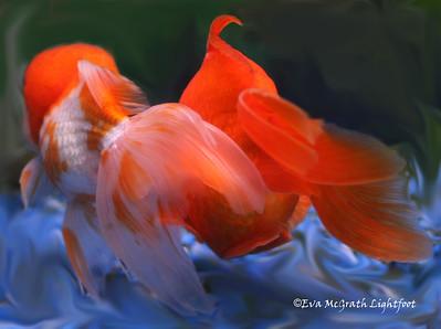 Fish Tails.