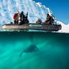Diving, Antarctica, March