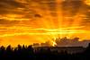 brilliance at sun's last light