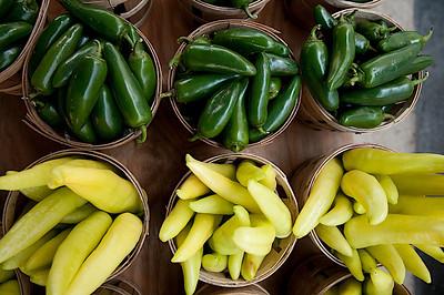 CC_FarmersMarket-0184.jpg