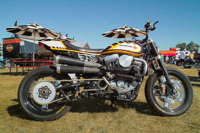 SDIM0067_8_9 - Turbo Harley