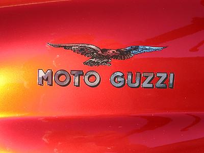 Guzzi Tank Logo