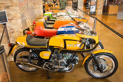 Race Bikes at Red Rock Harley-Davidson