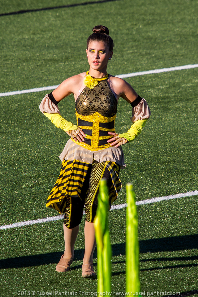 20131022 UIL Reg 18 Marching Contest-0465