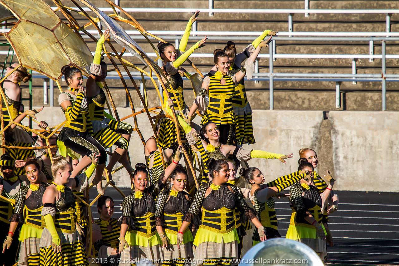 20131022 UIL Reg 18 Marching Contest-0432