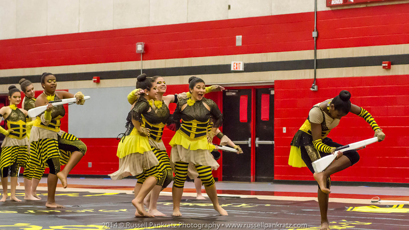 20140301 Bowie Indoor Festival - A Guard-0126
