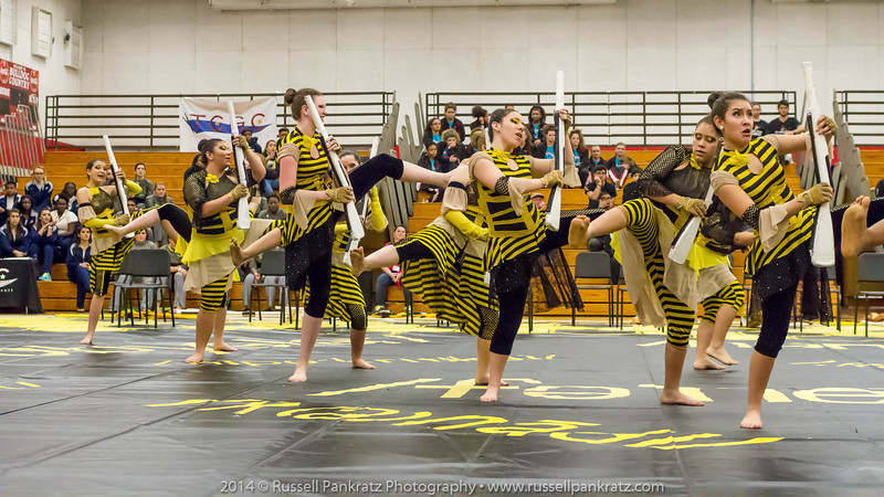 20140301 Bowie Indoor Festival - A Guard-0181