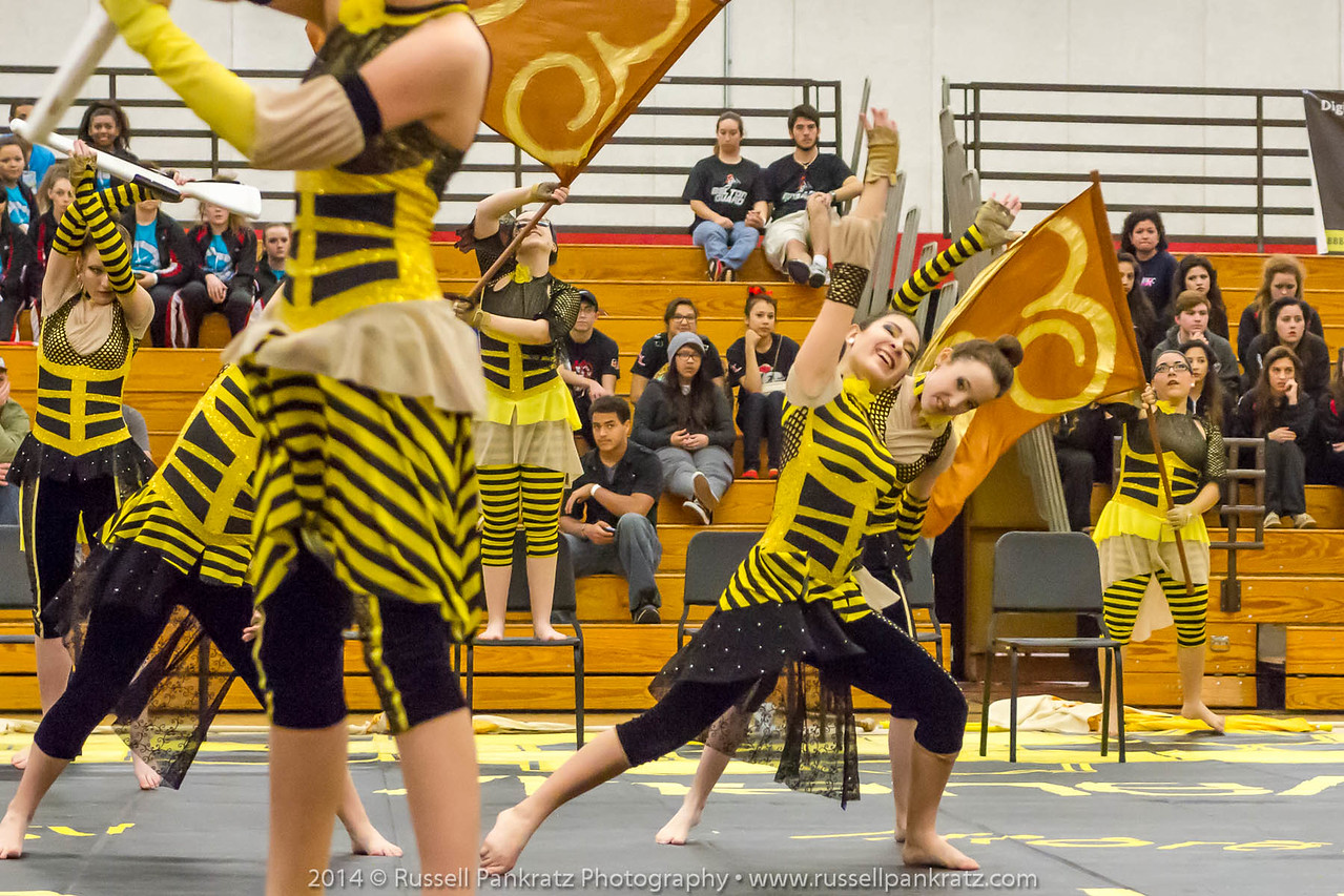 20140301 Bowie Indoor Festival - A Guard-0118
