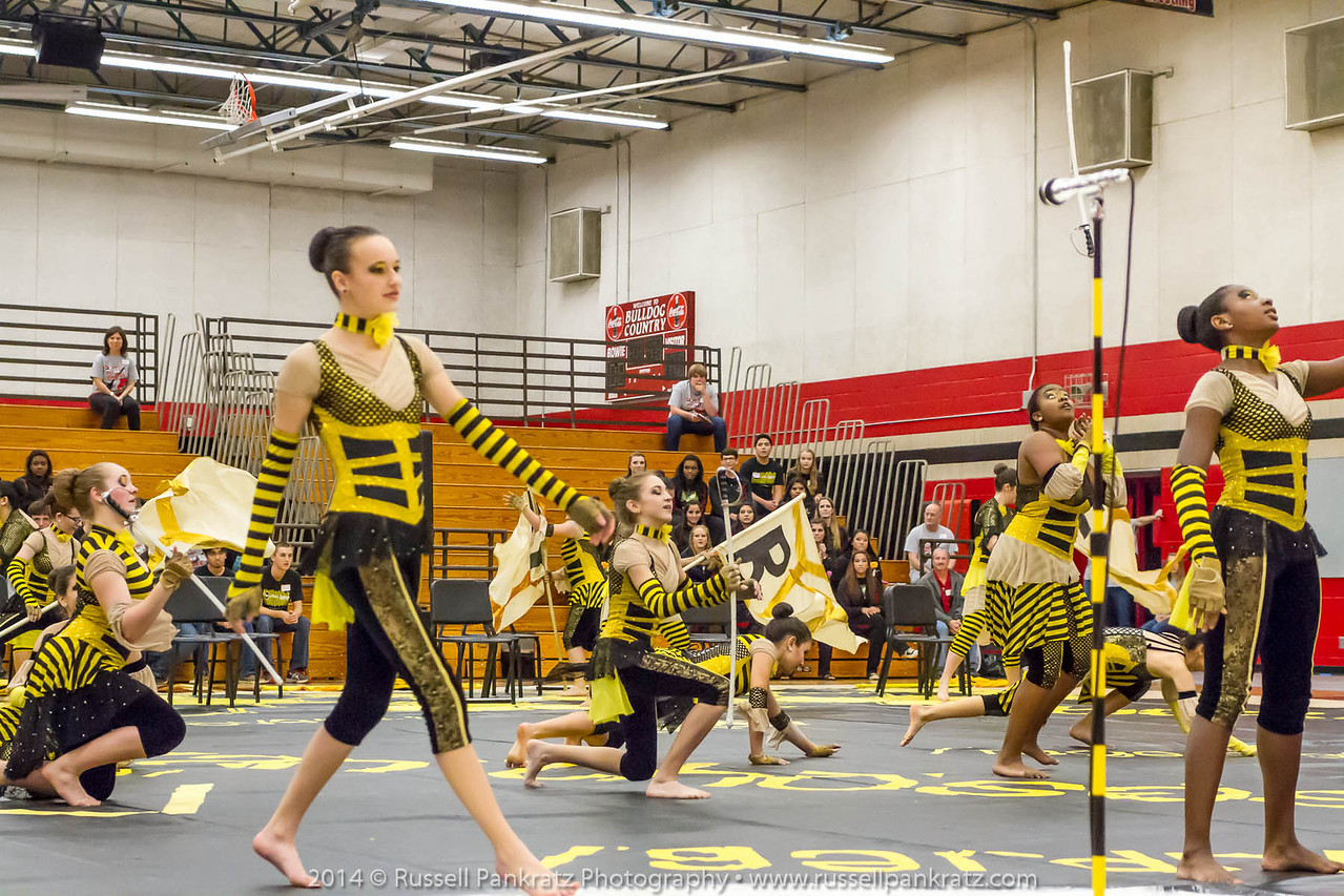 20140301 Bowie Indoor Festival - A Guard-0101