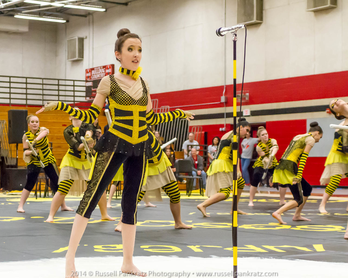 20140301 Bowie Indoor Festival - A Guard-0158