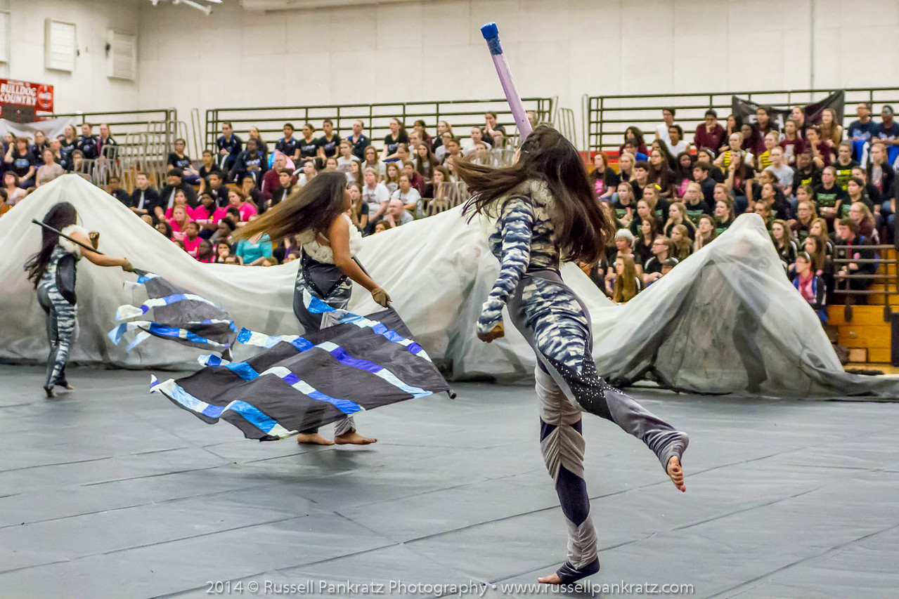 20140301 Bowie Indoor Festival - Open Guard-0644