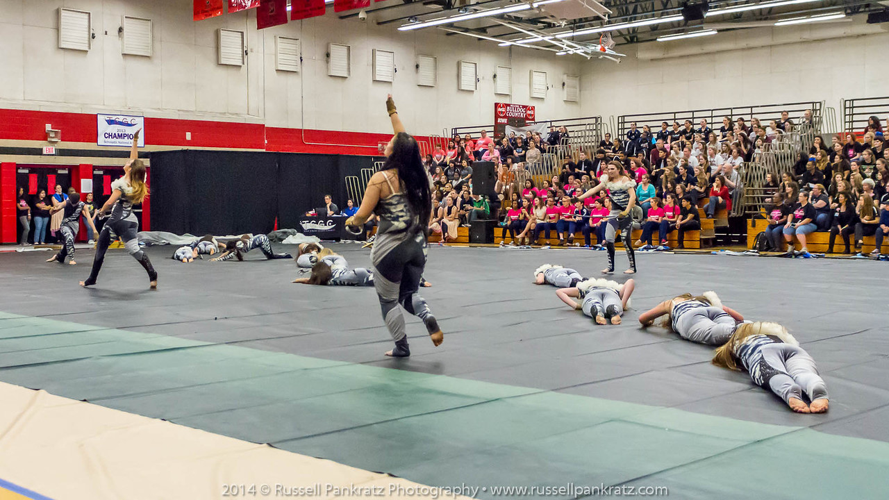 20140301 Bowie Indoor Festival - Open Guard-0394