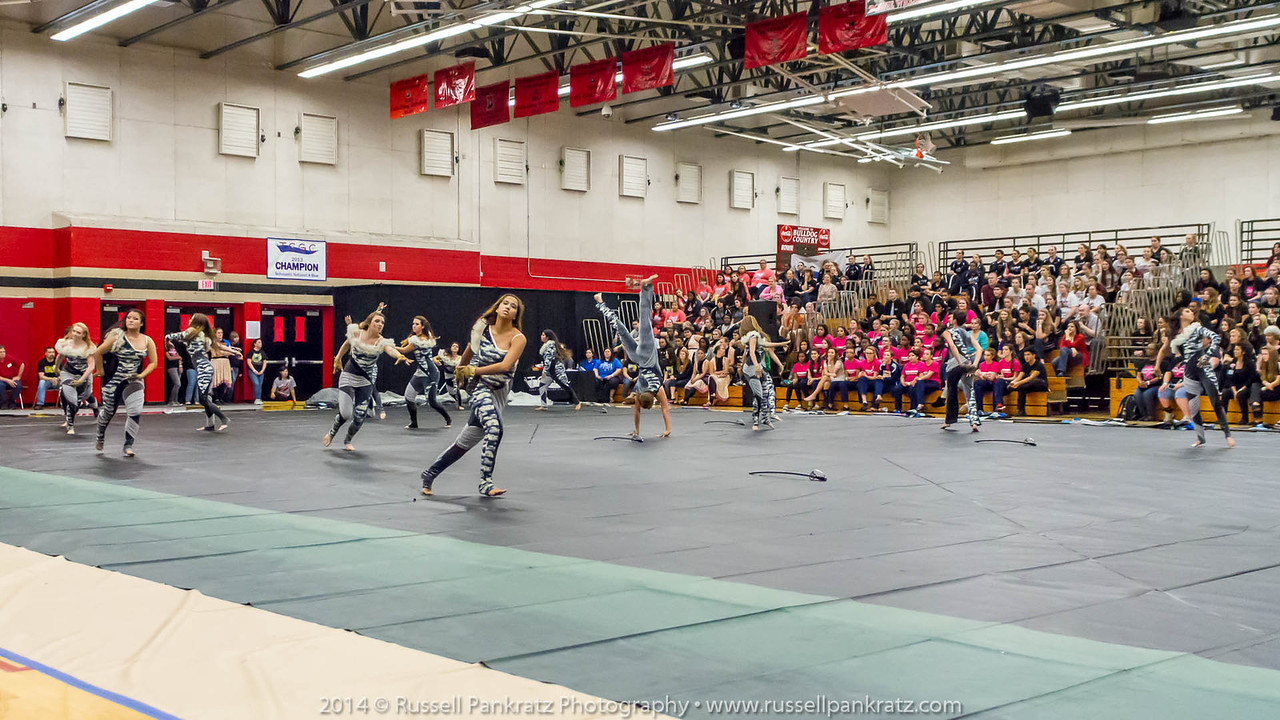 20140301 Bowie Indoor Festival - Open Guard-0356