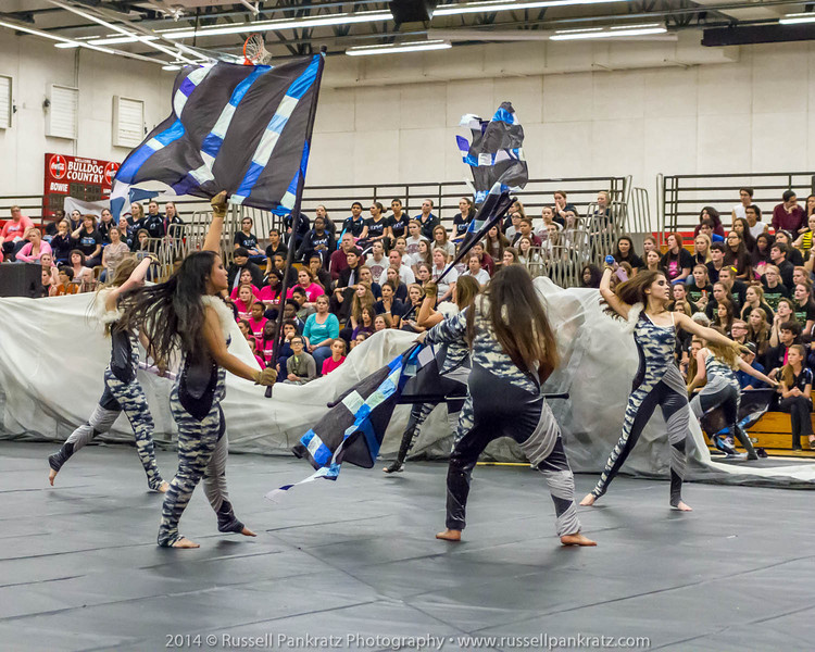 20140301 Bowie Indoor Festival - Open Guard-0653