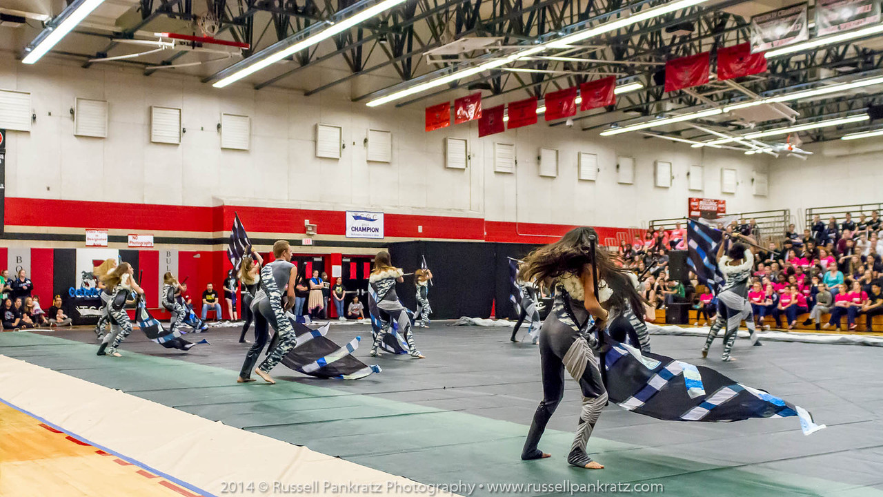 20140301 Bowie Indoor Festival - Open Guard-0700