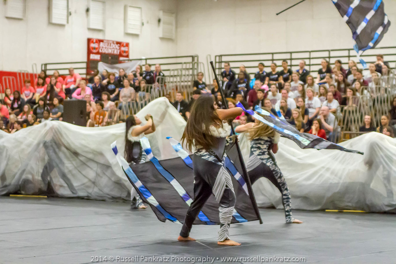 20140301 Bowie Indoor Festival - Open Guard-0639