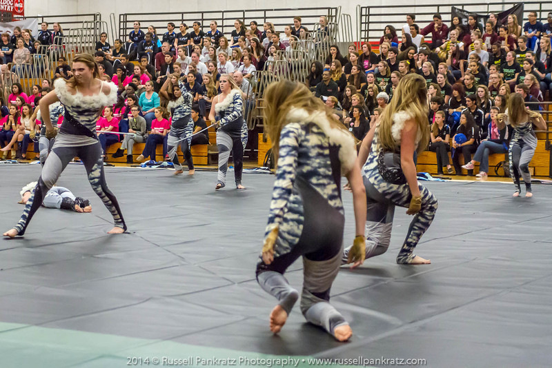 20140301 Bowie Indoor Festival - Open Guard-0405