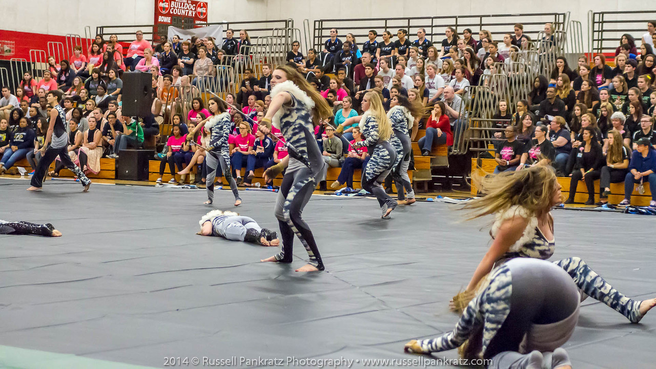 20140301 Bowie Indoor Festival - Open Guard-0404