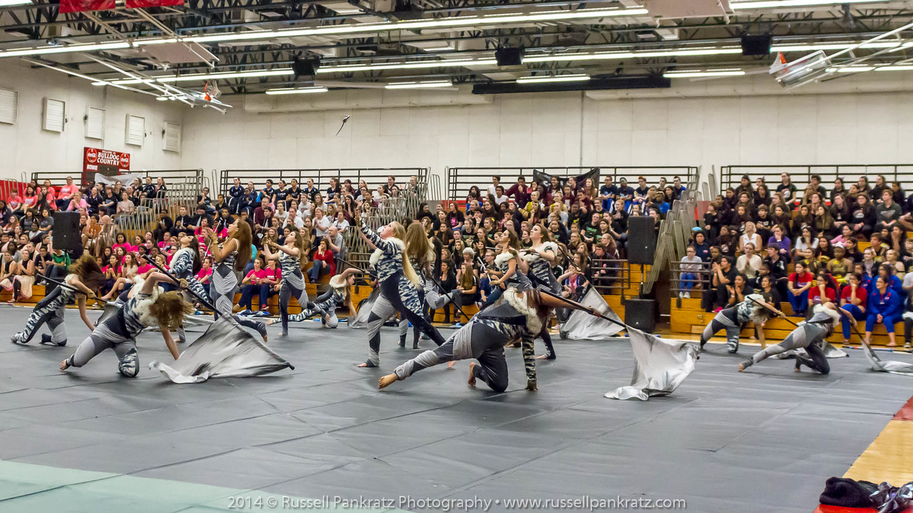 20140301 Bowie Indoor Festival - Open Guard-0493