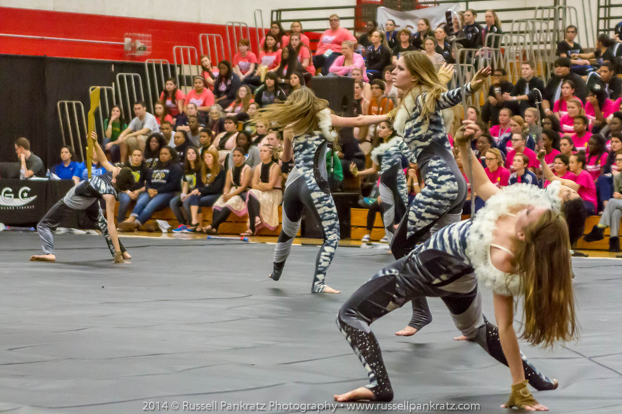 20140301 Bowie Indoor Festival - Open Guard-0415