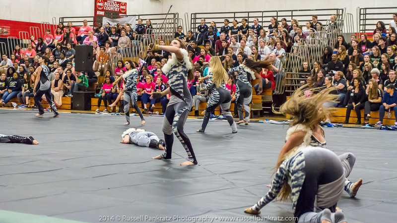 20140301 Bowie Indoor Festival - Open Guard-0403