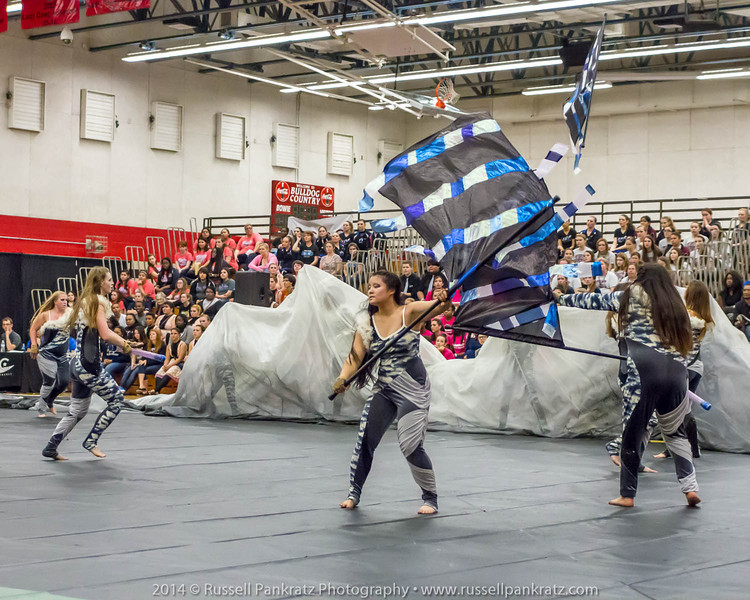 20140301 Bowie Indoor Festival - Open Guard-0651