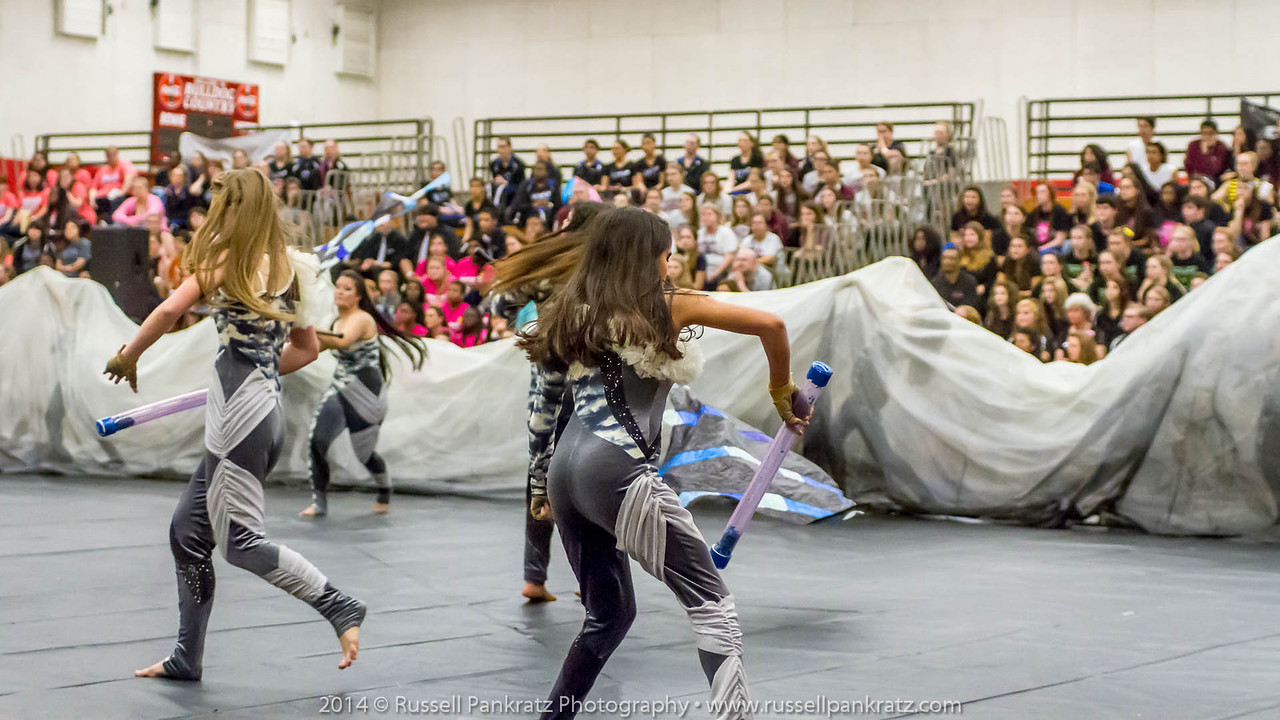 20140301 Bowie Indoor Festival - Open Guard-0642