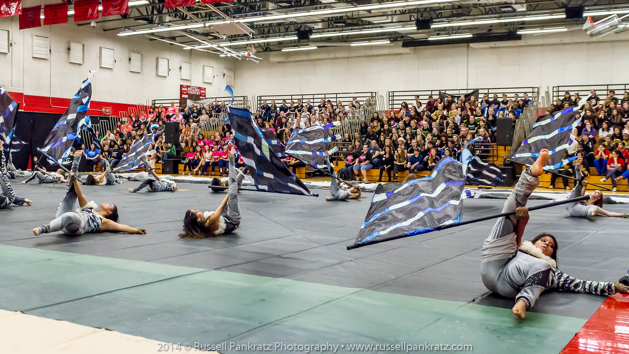 20140301 Bowie Indoor Festival - Open Guard-0690
