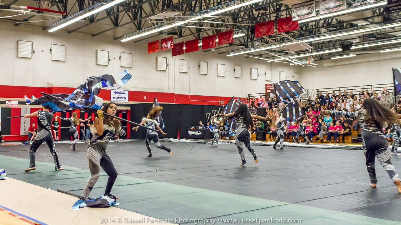 20140301 Bowie Indoor Festival - Open Guard-0716