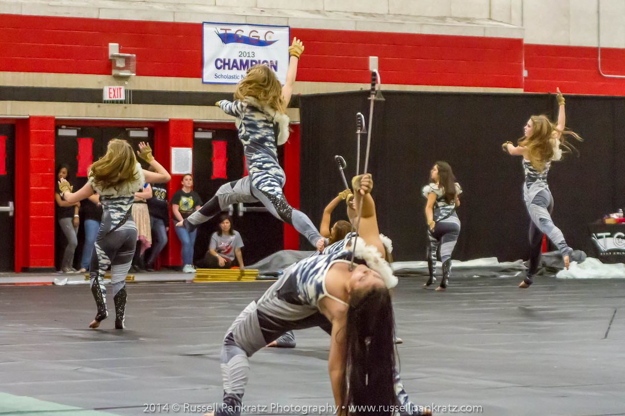 20140301 Bowie Indoor Festival - Open Guard-0421