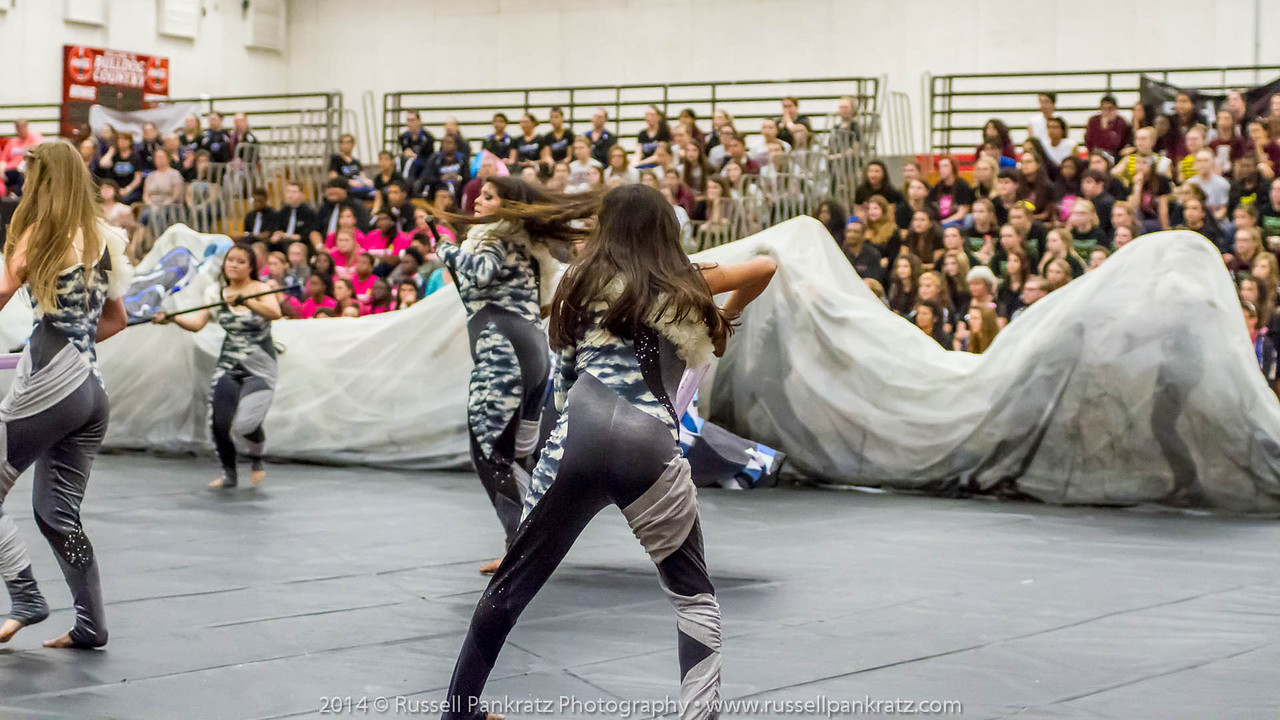 20140301 Bowie Indoor Festival - Open Guard-0643