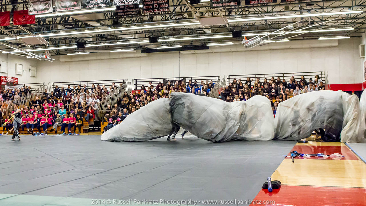 20140301 Bowie Indoor Festival - Open Guard-0735