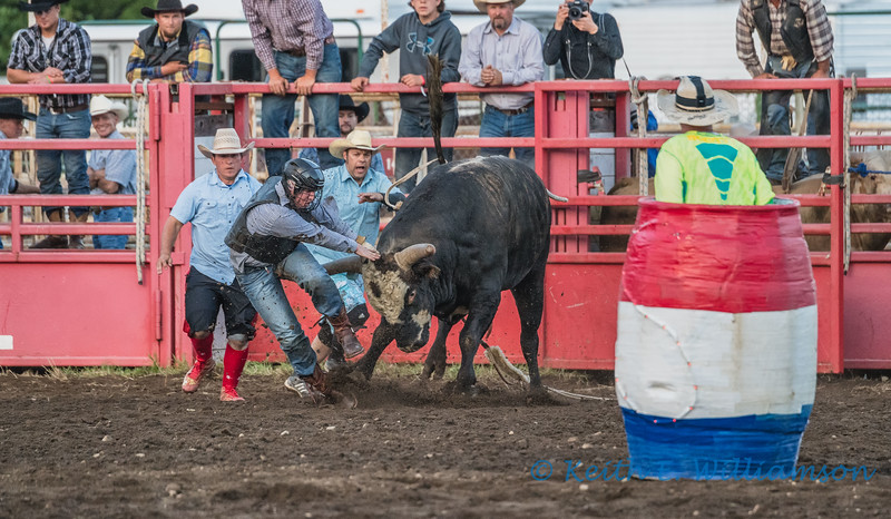 Bull Riding - 5