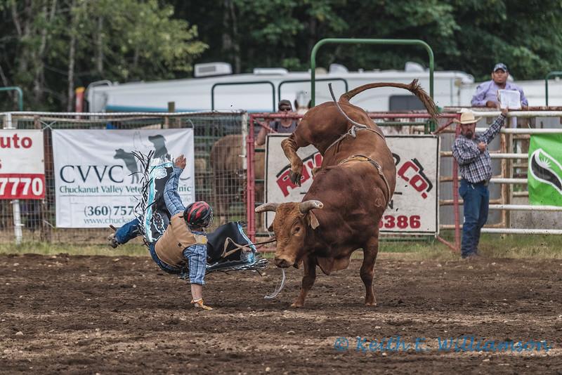 Bull Riding - 2