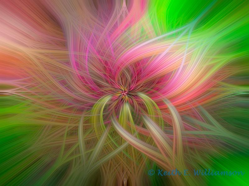 Kauai Twirl