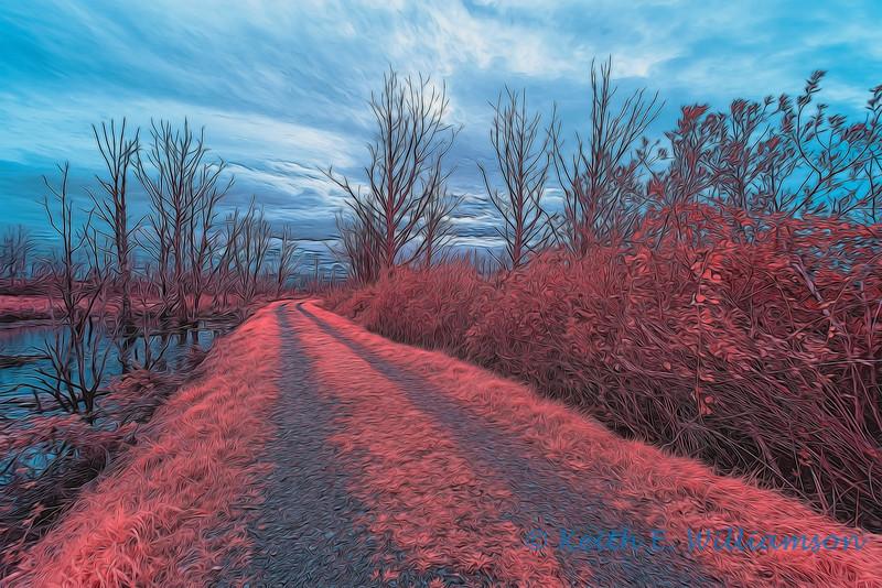 Fir Island, Infrared