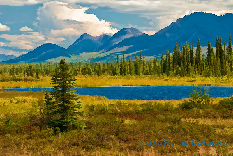 Late summer, Broad Pass, Denali National Park, Alaska