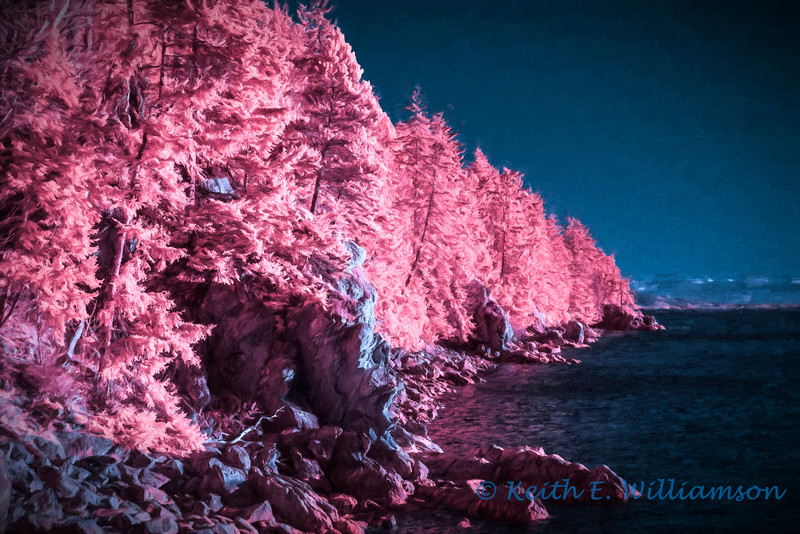 Larrabee Park, on Chuckanut Drive, in infrared