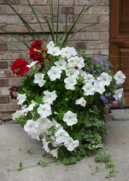 flowerpot7683