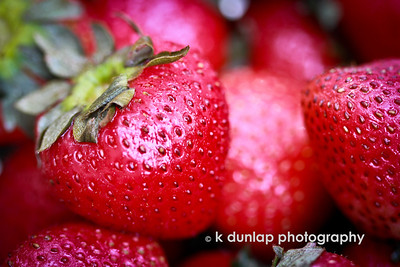 "06.18.12 = Knee Deep in June  ""You know it's just about Summertime when the strawberries begin to ripen on the vine…"""