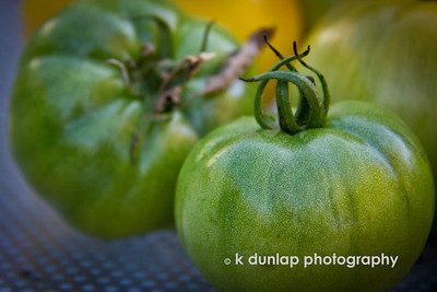 "10.23.12 = Knowledge and Wisdom  ""Knowledge is knowing that a tomato is fruit.  Wisdom is knowing not to put it in a fruit salad.""               Unknown, but it sounds like something a Dunlap would say."