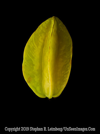Starfruit A0002535