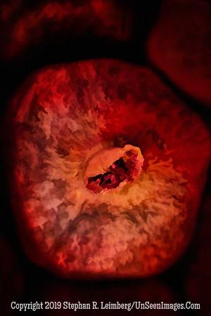 Pomegranate - Copyright 2105 Steve Leimberg - UnSeenImages Com _H1R8252