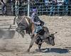 Bull riding - 10