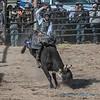 Bull riding - 9
