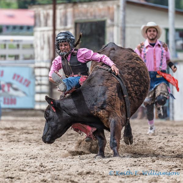 Junior cattle riding - 1